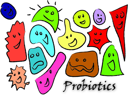 What the Gut?  How Probiotics Can Fix Your Life.